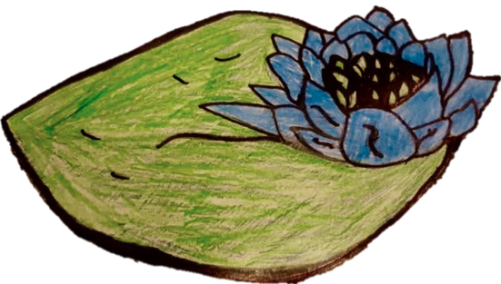 Blue Lotus Art Therapy
